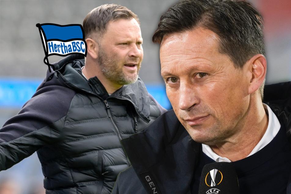Wird Roger Schmidt neuer Trainer bei Hertha BSC?