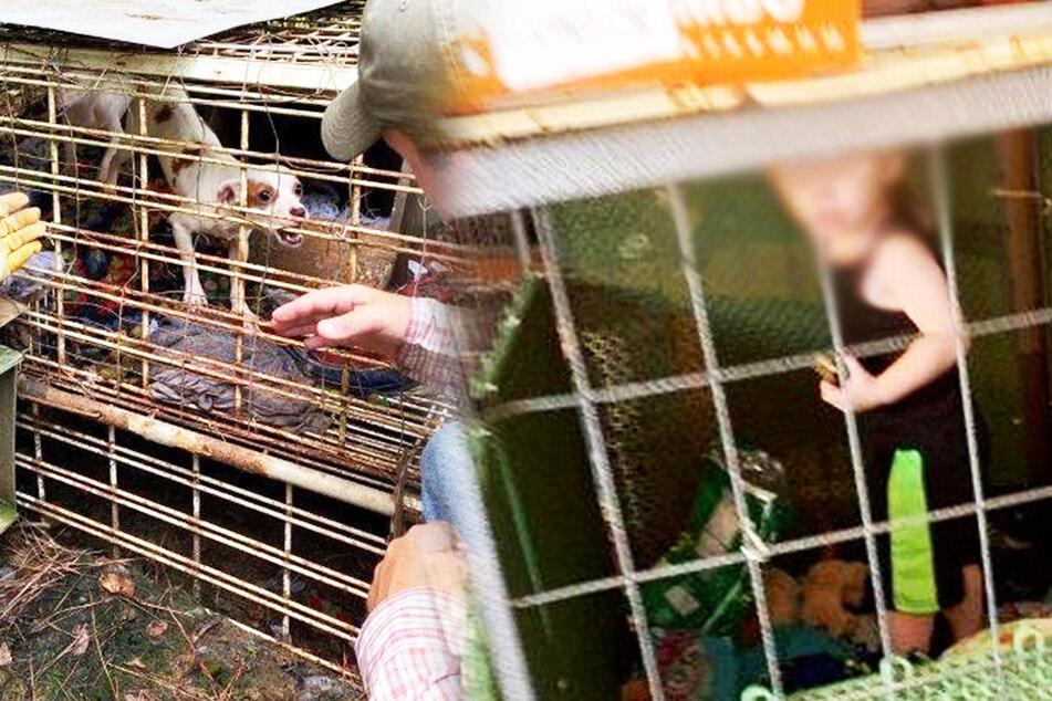 Kind lebt zwischen 703 Tieren und 127 Marihuana-Pflanzen im Käfig