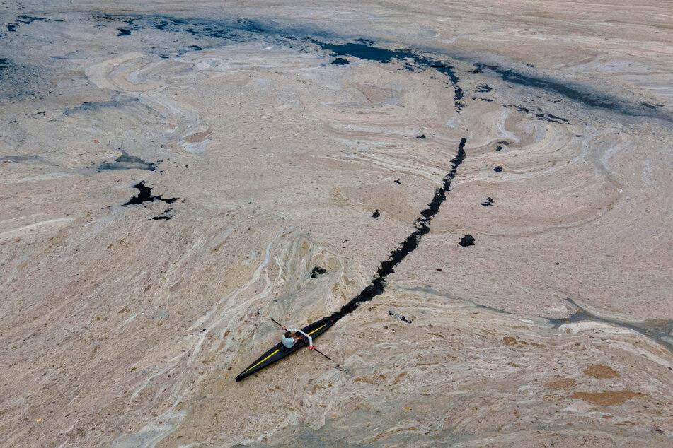Experten befürchten im Oktober eine neue Ausbreitung der Schleimmassen. Dann seien die Bedingungen dafür besonders günstig.