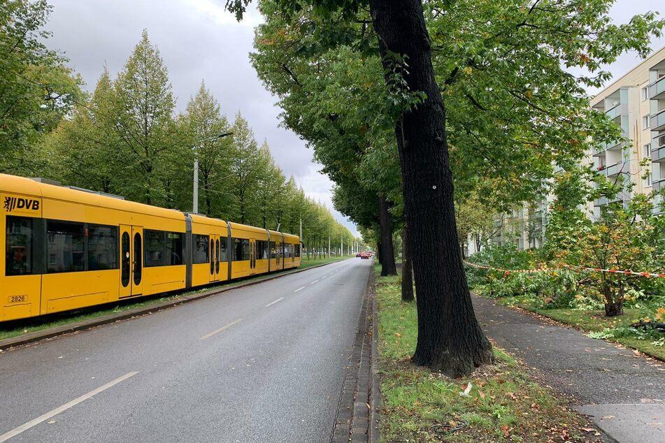 Der Straßenbahnen können wieder fahren.