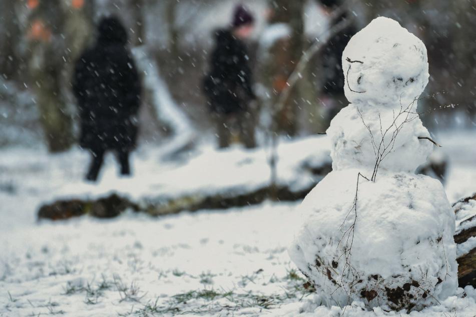 Ein kleiner Schneemann steht in einem Wald, während im Hintergrund Spaziergänger entlanggehen.
