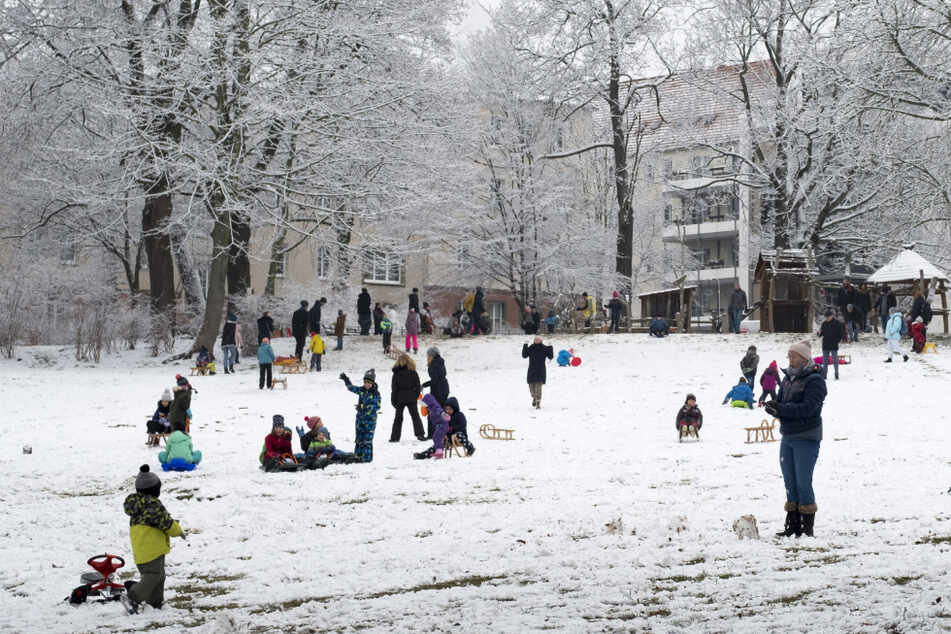 Am Gerhard-Hauptmann-Platz nutzten viele Familien den ersten Schnee für Rodelspaß und Schneeballschlacht.