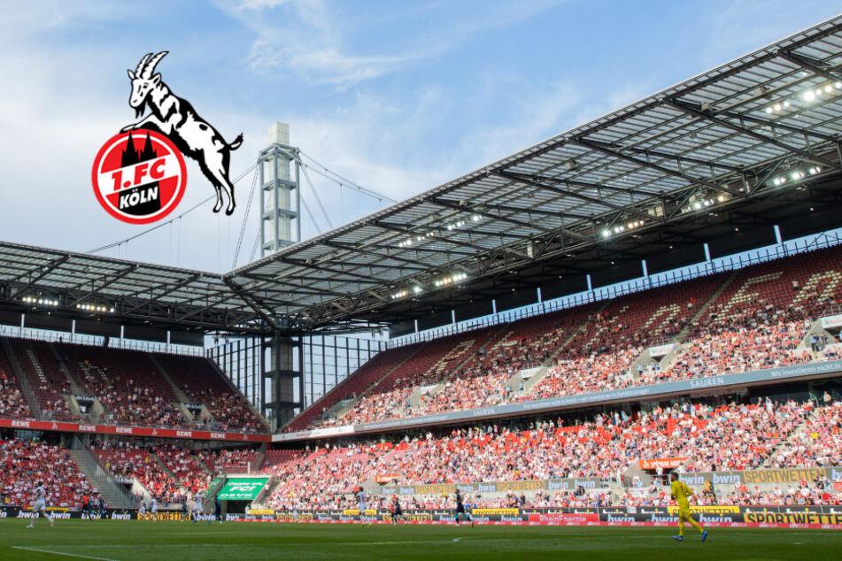 Effzeh goes Asien: Dieser Erstligist aus Japan wird neuer Partner des 1. FC Köln!