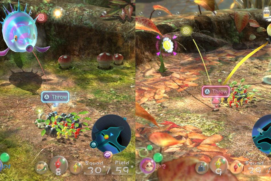 Im Koop-Modus wird im Splitscreen gespielt. Jeder Spieler kann einen der drei Hauptcharaktere steuern und mit seiner eigenen Pikmin-Armee auf die Jagd gehen.