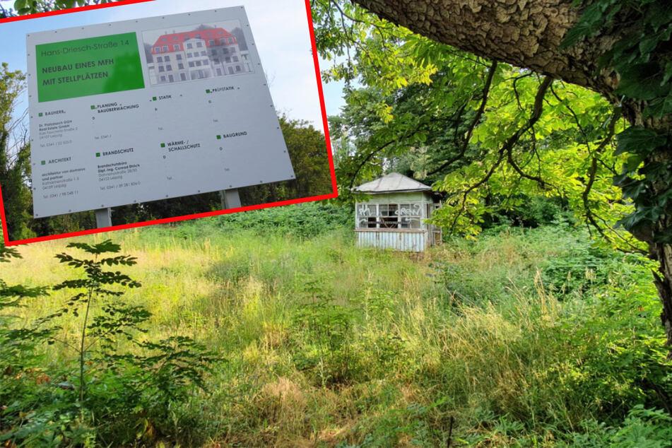 Die nächste grüne Oase, die zubetoniert werden soll: Das Areal an der Leutzscher Gärtnerei Hans-Driesch-Straße ist seit Jahrzehnten Rückzugsort für viele Tiere, darunter auch Fledermäuse.
