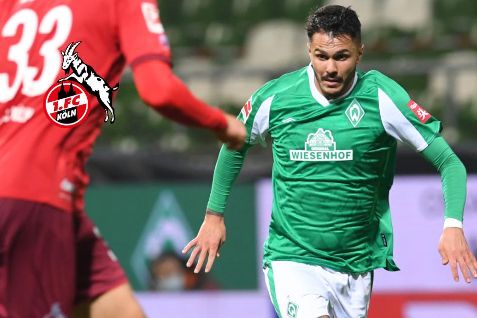 """Leonardo Bittencourt über mögliches FC-Comeback: """"Köln ist zur Heimat geworden"""""""