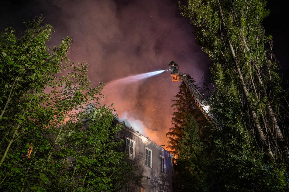 Die Feuerwehr bei Löscharbeiten. Auf die Bäume sei das Feuer nicht übergesprungen.