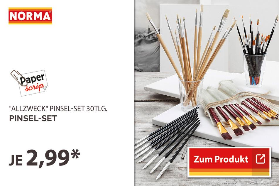 Pinsel-Set für 2,99 Euro.