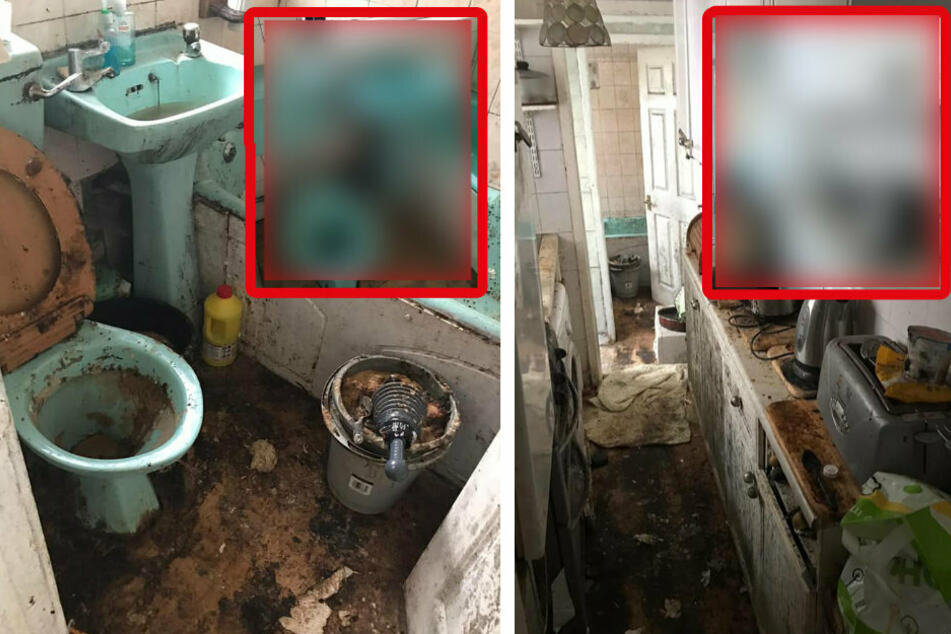 Elderly man living in decaying house comes home to an amazing surprise