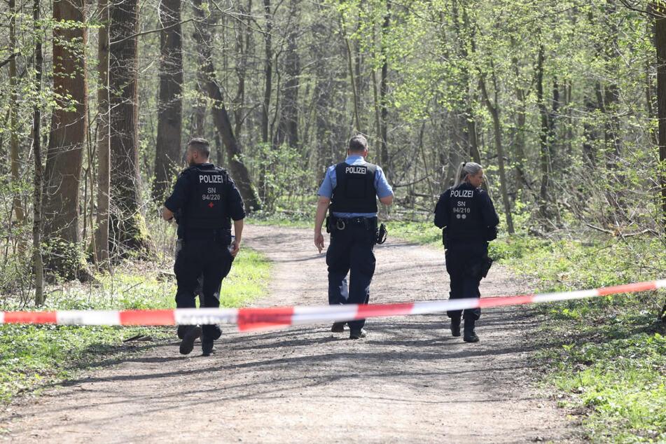 Der Tatort: Im südlichen Auwald soll der Angeklagte mit einem Hammer zugeschlagen haben.