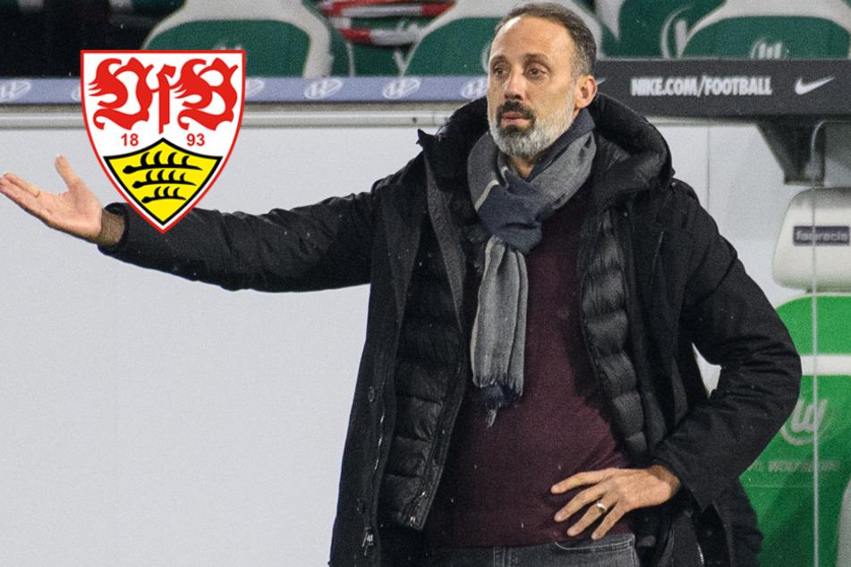 VfB-Pleite gegen Wolfsburg: Vieles spricht für Schiedsrichter-Fehler
