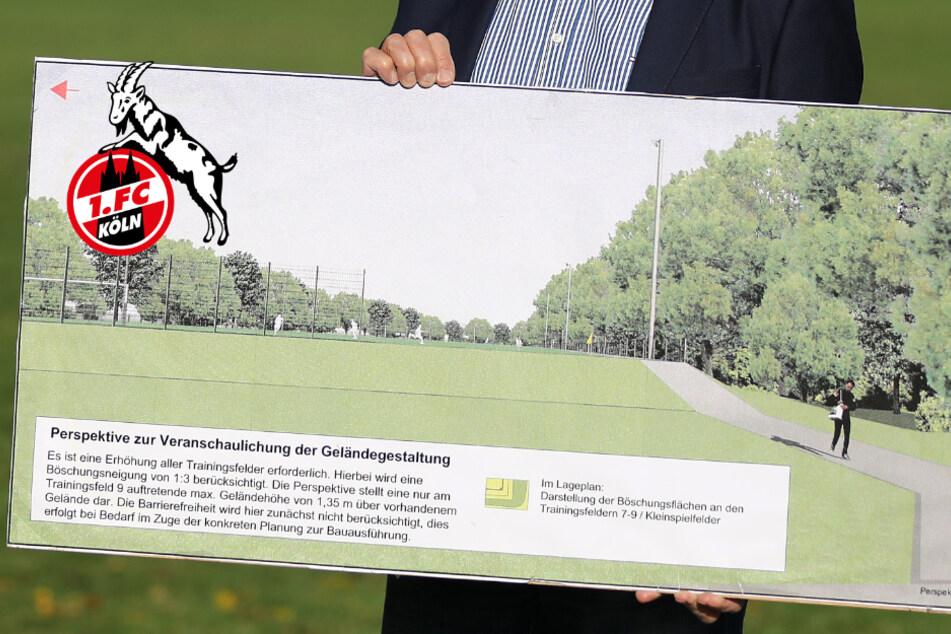 Erlaubnis erteilt: 1. FC Köln darf im Grüngürtel bauen!