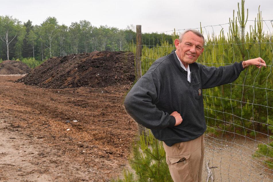 Bizarrer Rechtsstreit um Umweltauflagen: Wie viel Klärschlamm kann ein Wald ertragen?