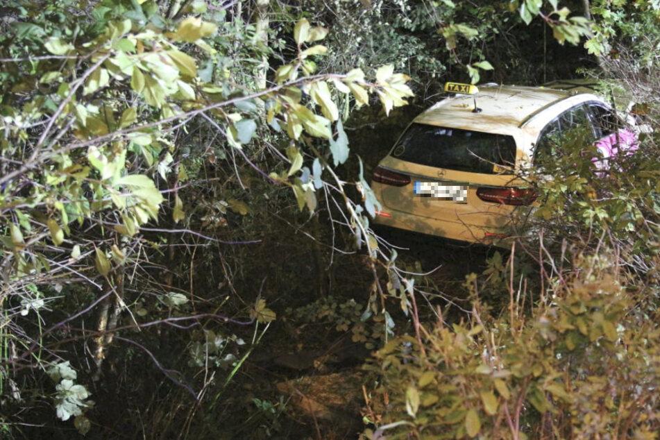 Das Taxi war nach dem Crash auf ein Grundstück geraten und dort gegen einen Baum gekracht.