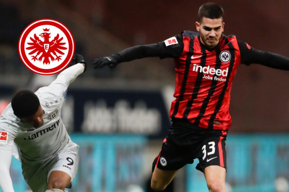 Starke Eintracht bremst Titelkandidat Leverkusen: Kommt jetzt noch Zirkzee?