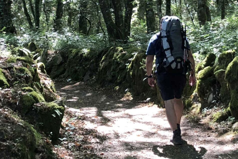 """Auf den Wanderwegen im Harz kann man sich im wahrsten Sinne des Wortes """"aus dem Weg gehen"""". (Symbolbild)"""