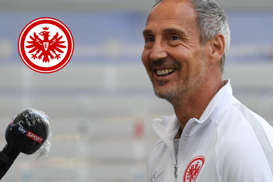 Eintracht-Coach Hütter will seinen Spielern das Jubeln nicht verbieten