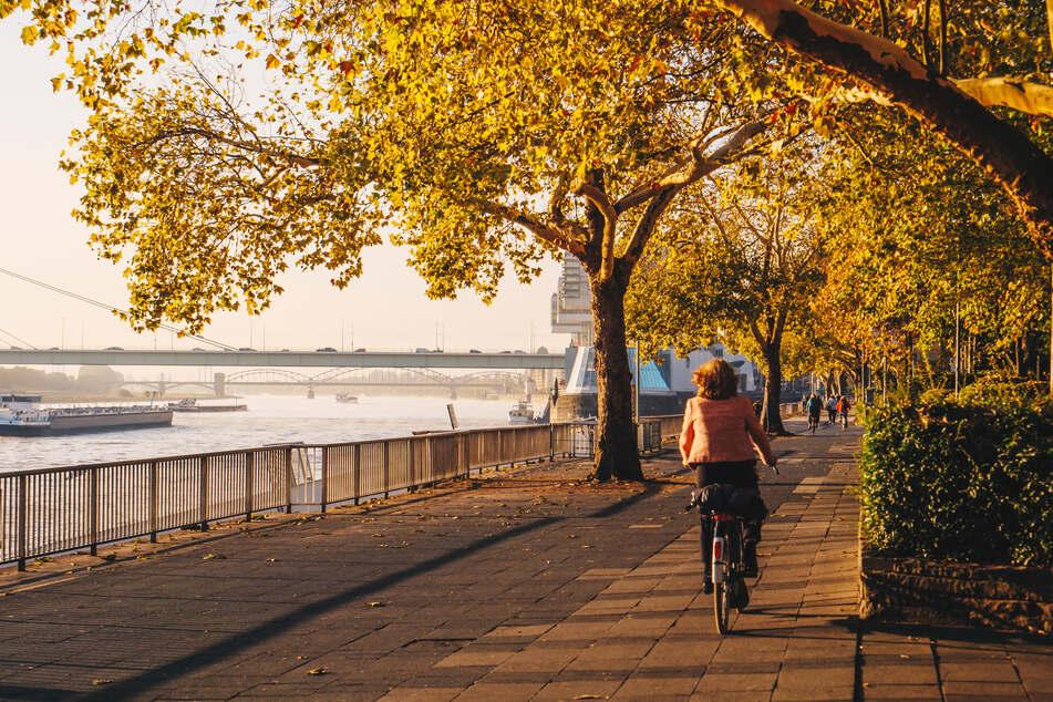 Goldener Herbst: Das NRW-Wetter am Wochenende wird sommerlich warm