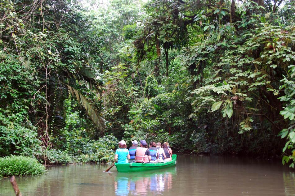 Touristen bei einer Bootstour durch den Nationalpark Tortuguero in Costa Rica. (Archivbild)