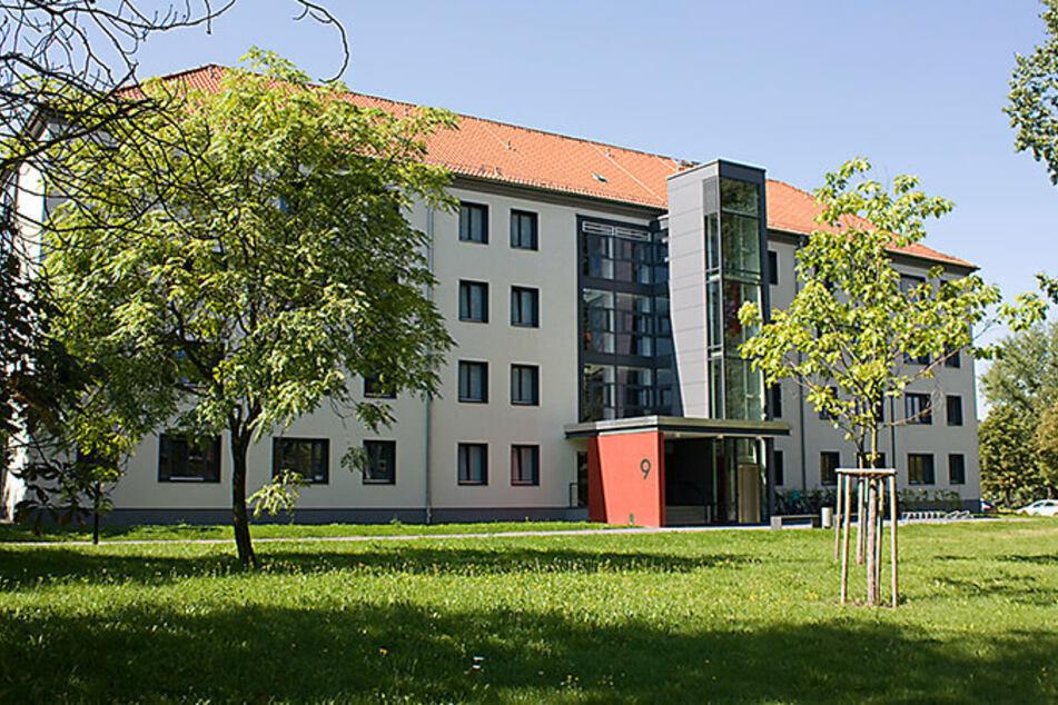 Damit Schmetterlinge und Insekten sich in Chemnitz wohlfühlen: Die Fläche vor dem Eingang zum TU-Gebäude Thüringer Weg 9 soll zur Blühwiese werden.