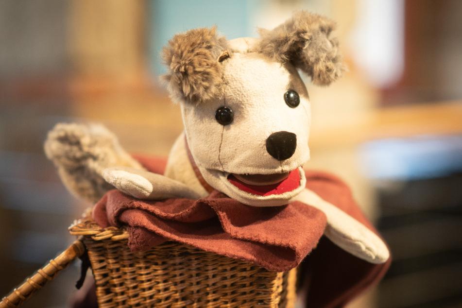 Die Figur des Plüschhundes Struppi, bekannt aus dem Kinderfernsehen der DDR.