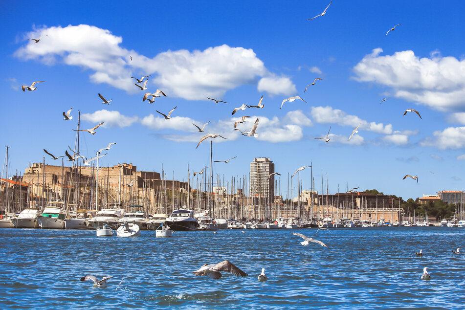 Die südfranzösische Hafenstadt Marseille. Das Herz der Stadt ist der alte Hafen Vieux-Port, wo Fischer ihren Fang direkt an der Anlegestelle verkaufen.