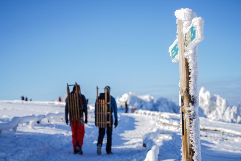Schneebruch-Gefahr! Straßen am Feldberg gesperrt