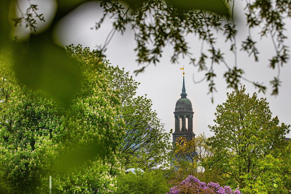 """Der Hamburger Michel ist zwischen den blühenden Bäumen des Parks """"Planten un Blomen"""" zu sehen."""