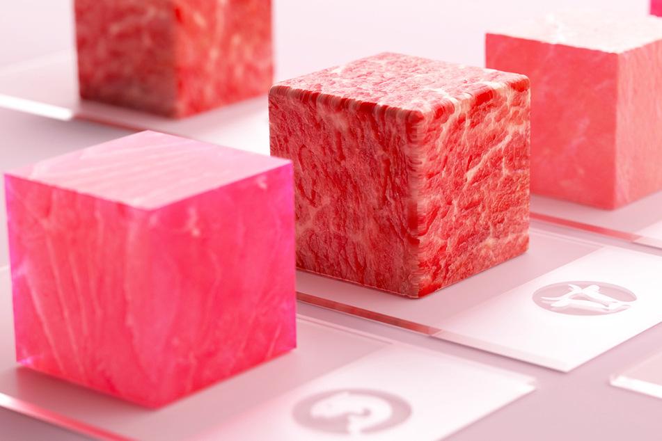 Fleisch aus dem Labor: Schon in einigen Jahren im Supermarkt-Regal?