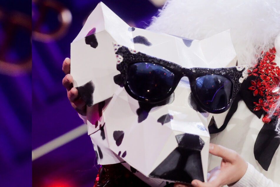 The Masked Singer: Wer versteckt sich hinter dem Dalmatiner?