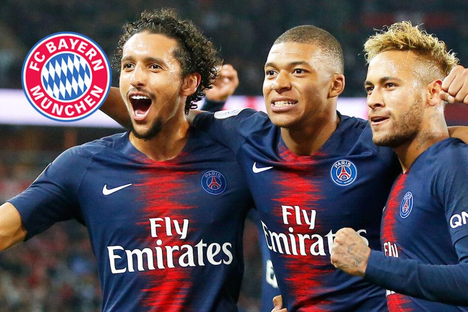PSG-Schock! Star fehlt bei großem CL-Showdown gegen FC Bayern
