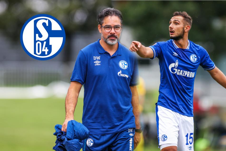 FC Schalke 04 in der Bundesliga-Vorschau: Droht S04 eine Horror-Saison?