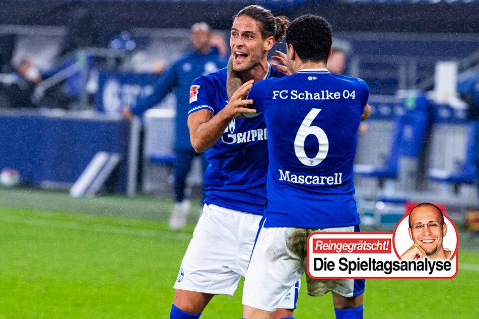 TAG24-Fußballredakteur Stefan Bröhl beschäftigt sich in seiner wöchentlichen Kolumne diesmal mit dem FC Schalke 04.