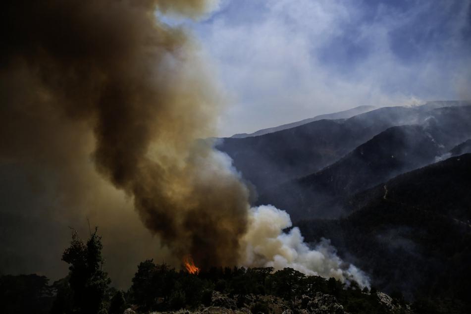Die Türkei hat keine einsatzfähigen Löschflugzeuge, um die Waldbrände aus der Luft zu bekämpfen.
