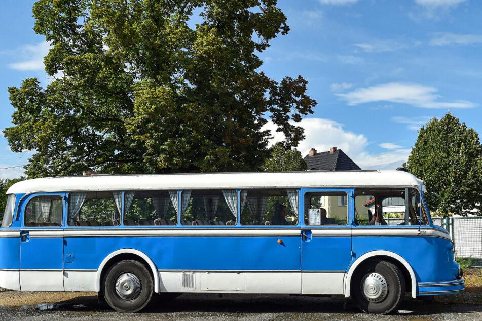 Fahren wie in den 60er-Jahren: Den Bus kann man für Spritztouren in Dresden und dem Umland mieten.