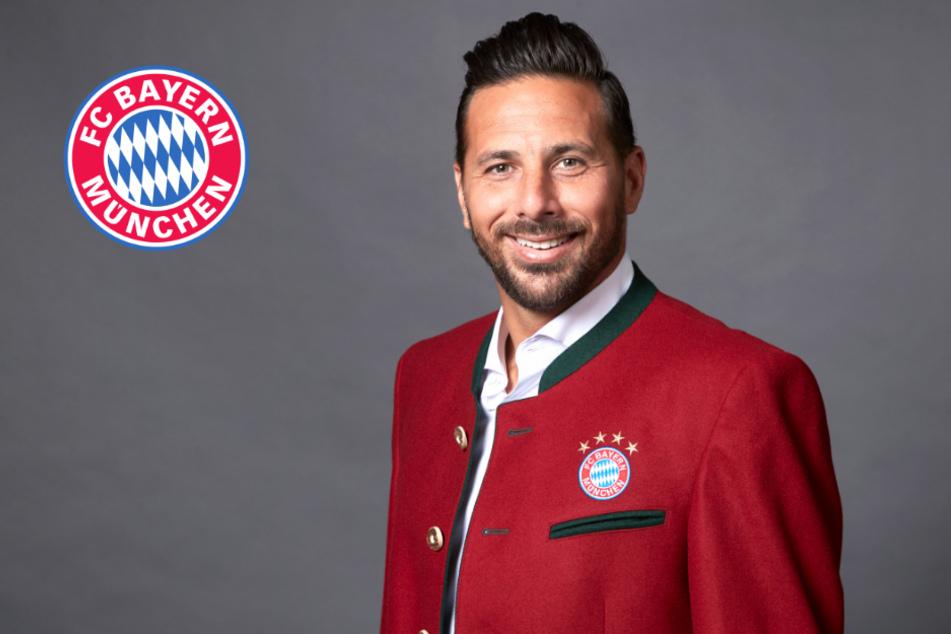 Publikumsliebling kehrt zurück! Claudio Pizarro wird Botschafter beim FC Bayern