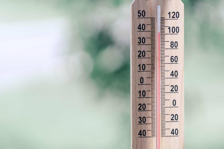 Im Sommer steigen die Temperaturen öfter mal auf über 30 Grad. Das kann für Mensch und Tier gefährlich werden. (Symbolbild)