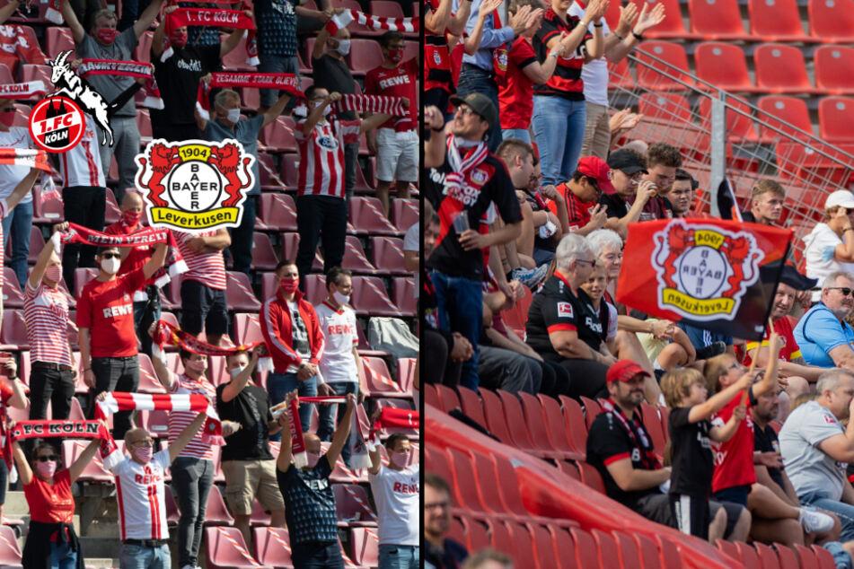 1. FC Köln und Bayer Leverkusen rechnen mit Tausenden Stadion-Besuchern