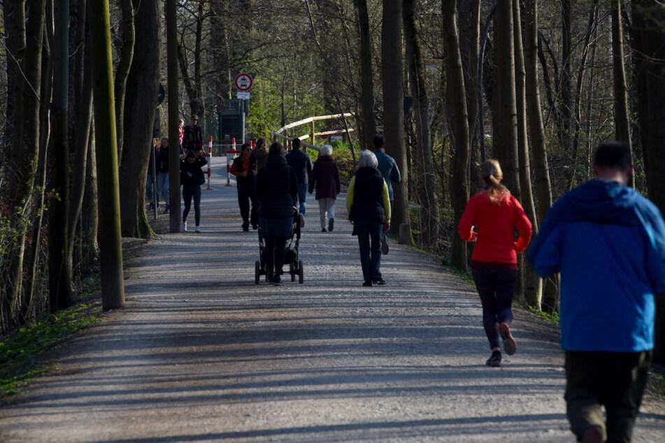 München: Achtung! Diese Gefahr lauert jetzt beim Spaziergang im Gebüsch