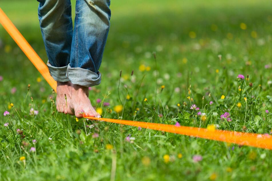 Beim Highline- und Familienfest in Hohnstein kann man selbst lernen, auf Slacklines zu laufen.