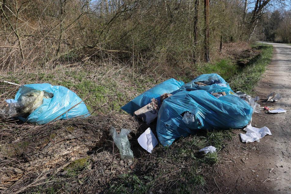 Müll in der Natur: Die Zahl der Umweltdelikte nahm im Raum Chemnitz zu.