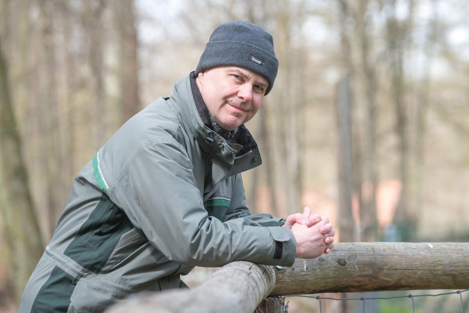 Dresdens Forstbezirksleiter Markus Biernath (54) vom Sachsenforst erklärt die Gründe für das Elch-Aus.
