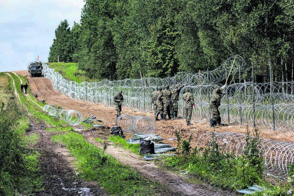Polen hat begonnen, Stacheldraht an der weißrussischen Grenze zu ziehen, um den Flüchtlingsstrom einzudämmen.
