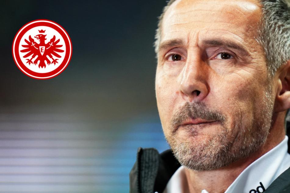 Eintracht Frankfurt: Trainer Hütter spricht Machtwort zu Kevin Trapp