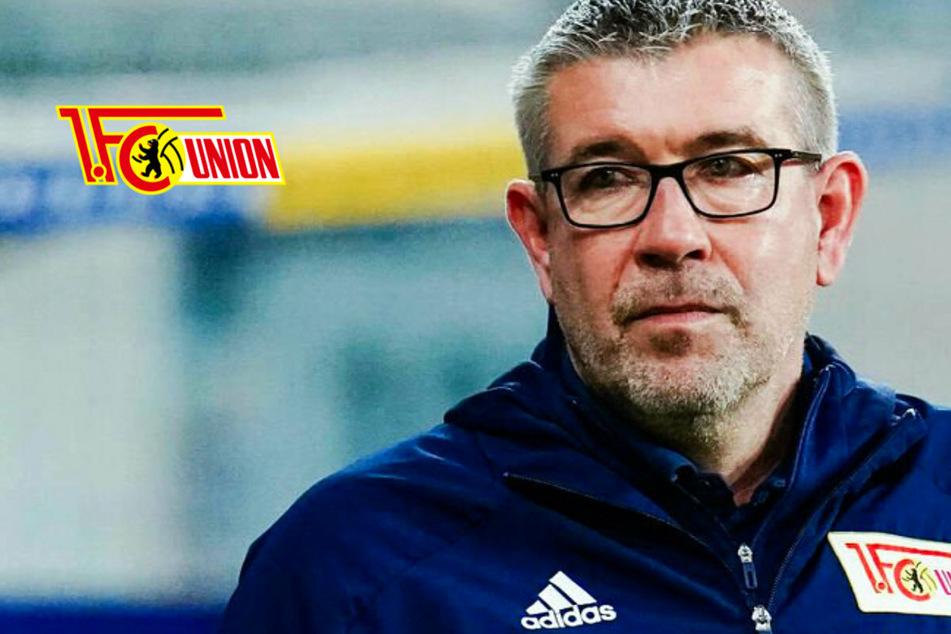 1. FC Union ist im Aufstiegsrausch und möchte auch TSG Hoffenheim 1899 ärgern
