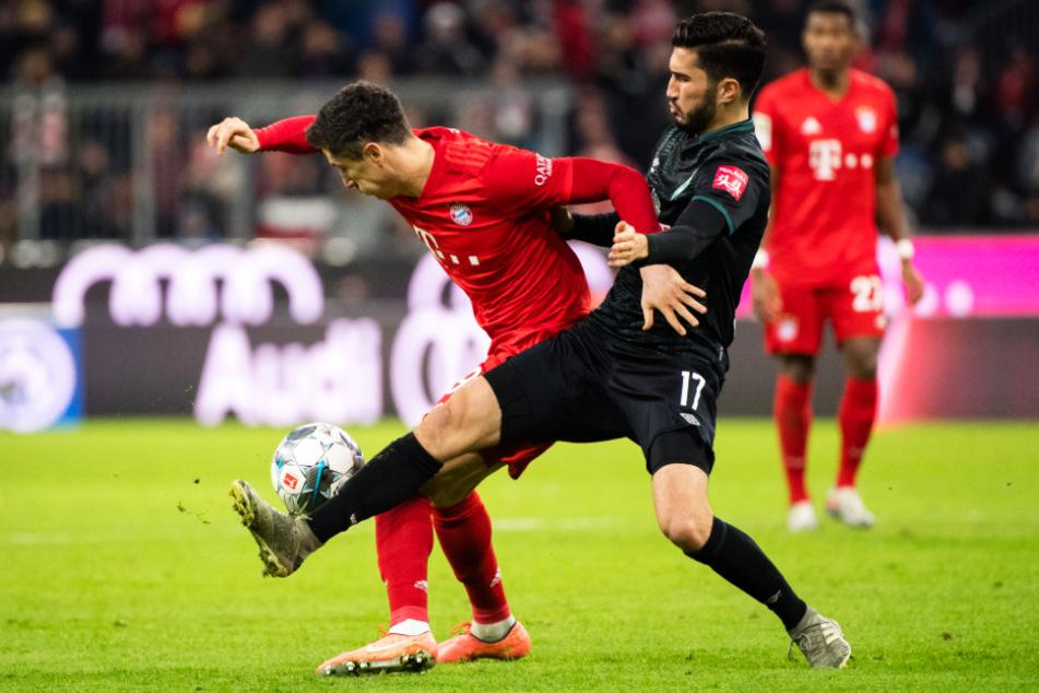Duell der ehemaligen Dortmunder Mannschaftskollegen: Nuri Sahin (r.) im Trikot vom SV Werder Bremen im Zweikampf mit Bayerns Stürmer Robert Lewandowski.