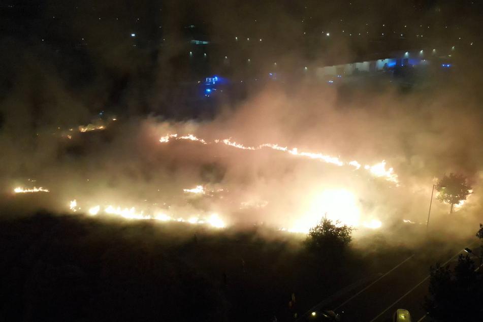 Im Stadtteil Großzschocher breitete sich ein Feuer auf 15 Hektar Feld aus.