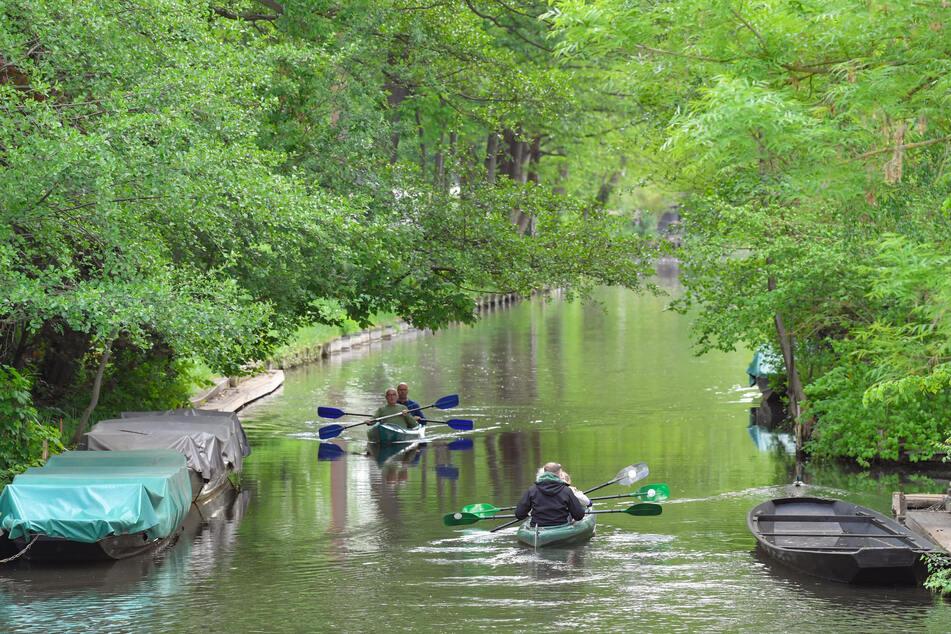 Touristen sind mit Kajaks auf einem Fließ im Spreewald unterwegs.