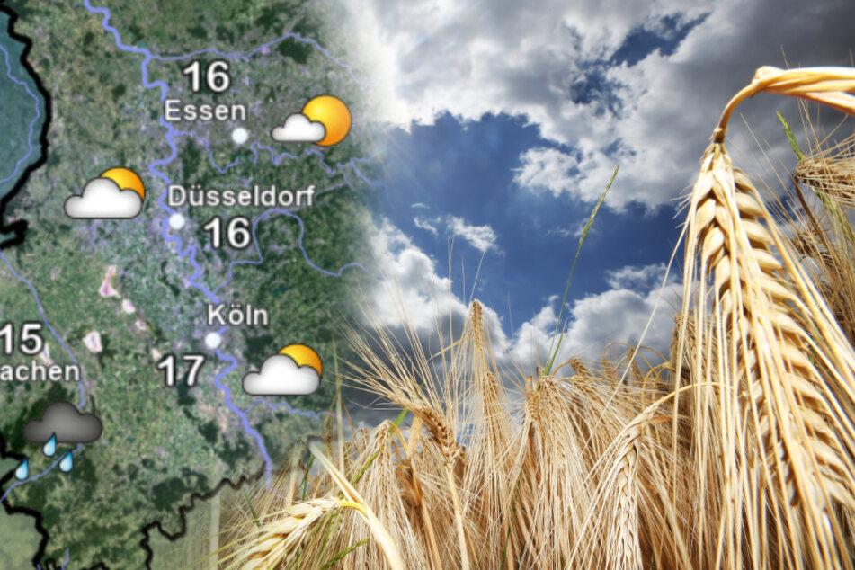 Regen, Wolken und Wind: Das Wetter in NRW bleibt wild