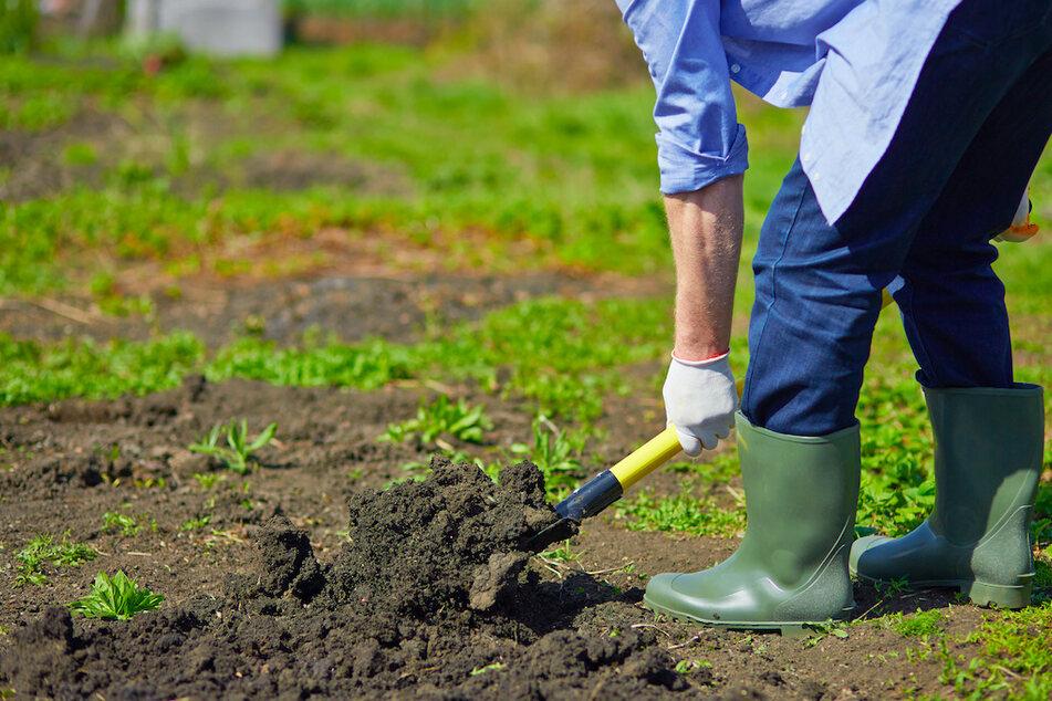 Mann macht bei Gartenarbeit erschreckenden Fund, Sonderkommando muss vor Ort reagieren
